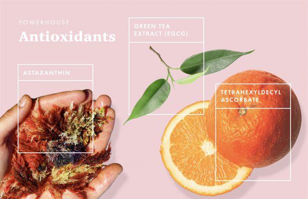 Powerhouse antioxidants for skin